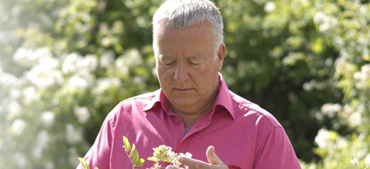Fruchtwein und Blütenwein von Bernhard Zemp